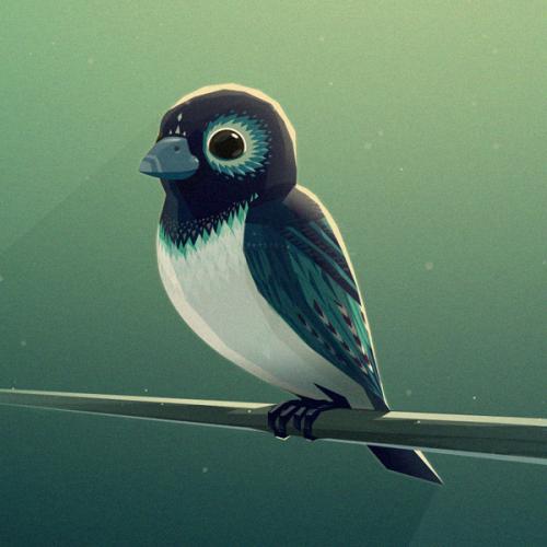 Bird_mg