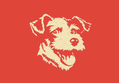 Protected: Super Secret Terrier Portrait